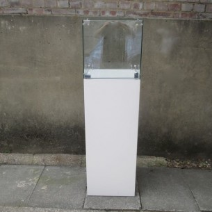 Glass Case 40cm³ + Plinth Hire