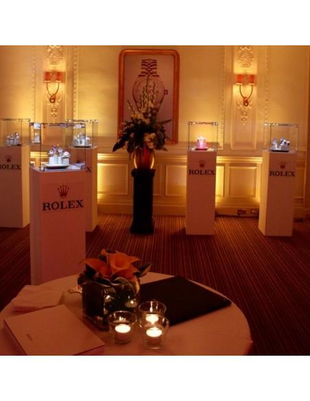 Rolex x Artplinths hire show cases