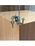 Glass Display Case & Hardwoood Plinth