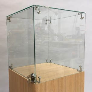 Glass Display Case & Hardwoood Plinth