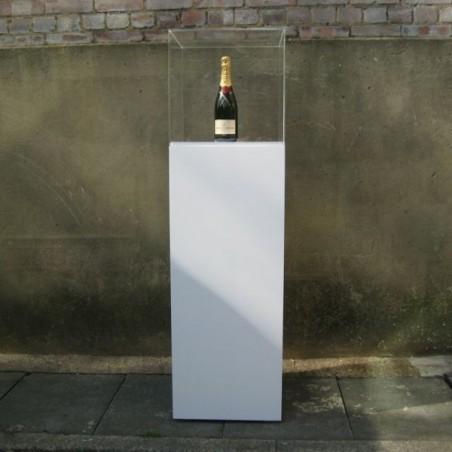 HIRE Standard plinth & hood