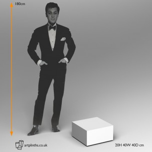 Small  Plinth by artplinths 20H x 40W x 40D cm