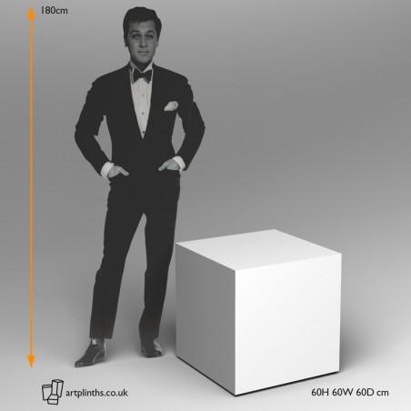 Hire 60cm² Plinths