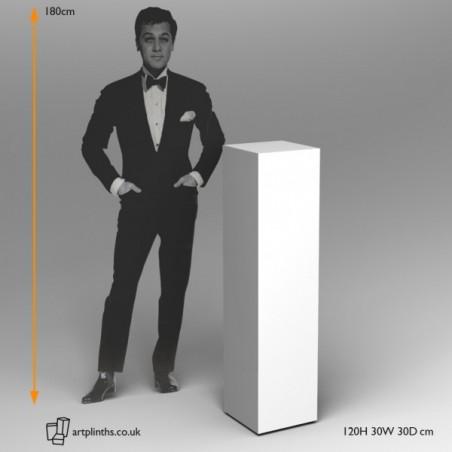 30cm² Plinths