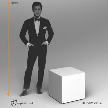 cube plinths in various sazes and finishes by artplinths.